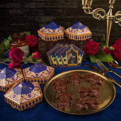 Harry Potter Chocolate Frog Mould with Collectible Cards