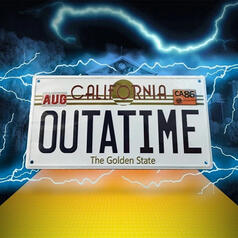 Back to the Future License Plate Replica